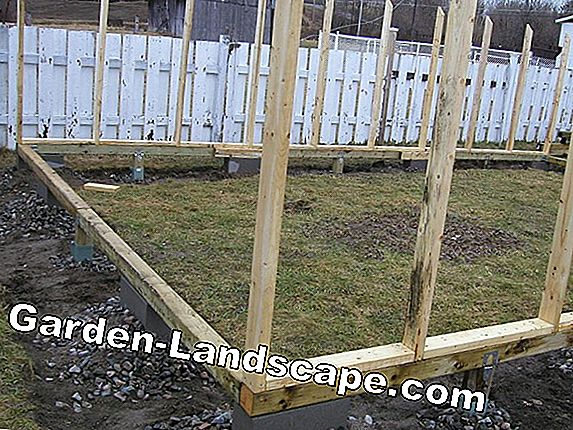 Greenhouse Foundation: Construction et astuces pour la construction